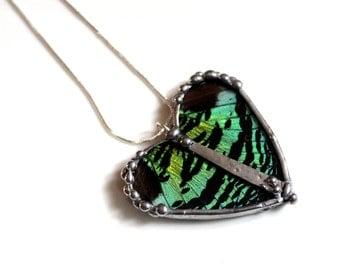 Real Butterfly Heart Pendant - Green Sunset Moth
