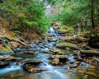 Mountain Stream Print, Nature Photography, Green Forest wall art, photo by CT Costa, available in various sizes