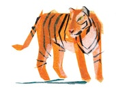 Jack Tiger - Animal Art Print