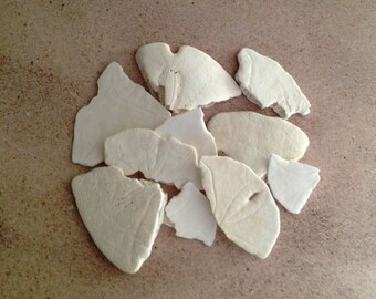 10 Pieces of Broken Real Sand Dollars - Great for Nautical Crafts and Decorating!