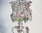 Floral Anatomy: Skeleton Print of Oil Painting