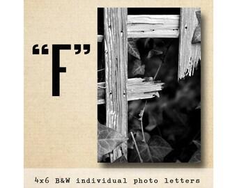 Letter F Alphabet Photography  Black & White 4x6 Photo Letter UNFRAMED