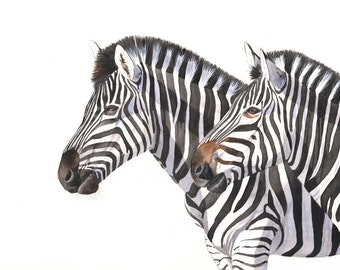 Zebras watercolor painting animal art PRINT of watercolor painting A4 size, Z2014, zebra print, african animal print