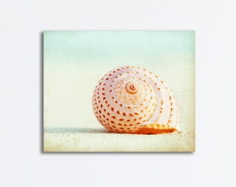 "Seashell Canvas Wrap, large beach gallery wrap print pale pastel light peach seashore wall art 24x30, 20x24, 16x20, 11x14, ""Seashell Voices"""