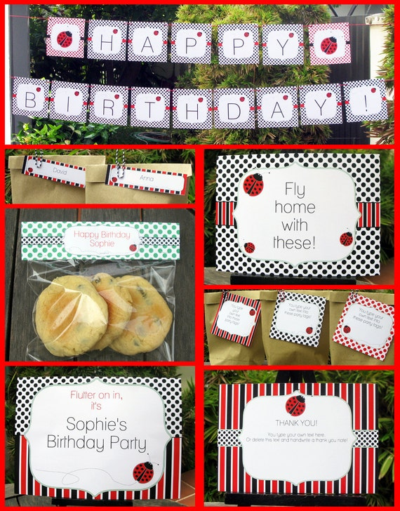 ladybug party invitations amp decorations full by simonemadeit