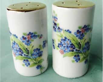 Vintage Porcelain Salt Pepper Shakers Blue Flowers