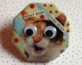 Cat What Does This Mean Googly Eye Magnet