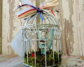 Fairy House Cage With A Fairy Garden And Young Boy Fairy