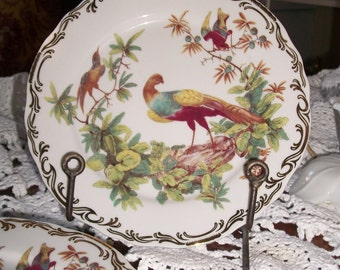 Set of Four Rutherford's Birds Dessert Plates