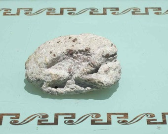 Hand Carved Stone Frog