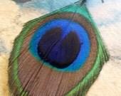 Single Peacock Feather Earring. Wire wrapped in purple wire. Silver Earring. Omnifae