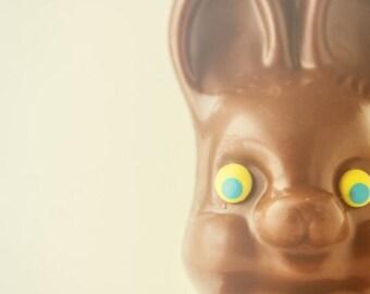 Easter Bunny Rabbit Chocolate Candy Spring Springtime Fun Whimsical Photograph Easter Basket Nursery Decor Easter,  Fine Art Print