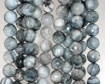 10mm Chrysoberyl Cat Eye Gemstone Grey Faceted Round 10mm Loose Beads 15.5 inch Full Strand (90146990-425)