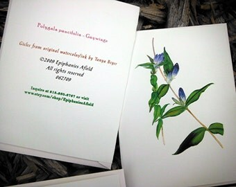 Five Blank Cards on Handmade Paper - Floral Pieces with Squirrels