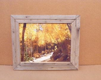"A Colorado Mountain Trail 11"" X 14"""