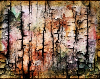 Abstract Charred Color Burned Wood Pastel Colors with Black Fine Art Photography Print or Gallery Canvas Wrap Giclee