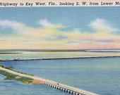 """Ca. 1930s """"Overseas Highway"""" Lower Matecumbe Key, FL Topographical Picture Postcard - 123"""