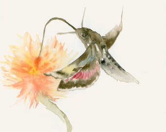 Moth and Flower Original Watercolor Painting