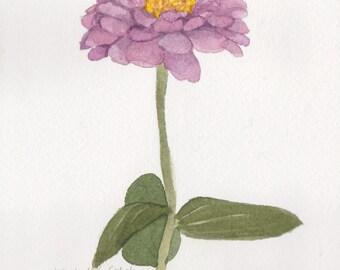 Single Zinnia z7 5 x 7 Original Watercolor Painting by Wanda Zuchowski-Schick
