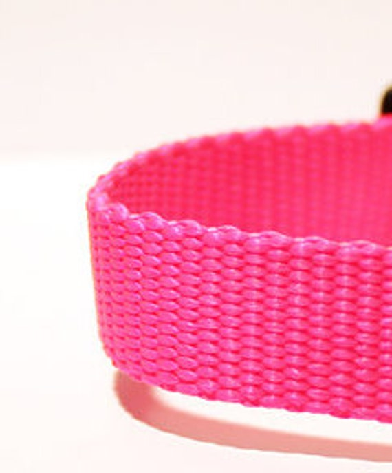 """5ft, 9in Neon Pink 3/4"""" Wide Nylon Webbing for Dog Collars"""