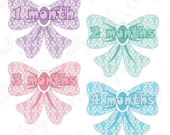 Girl Monthly Baby Stickers, 1 to 12 Months, Monthly Bodysuit Stickers, Baby Age Stickers, Damask Bows
