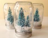 Winter Wonderland Mason Jar Christmas Decoration