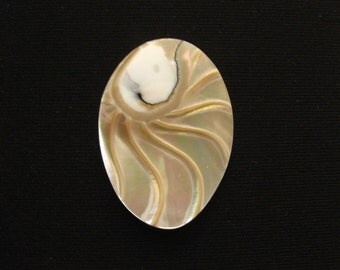 Nautilus Shell oval 35x45mm
