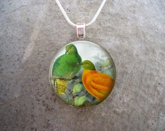 Bird Jewelry - Glass Pendant Necklace - Victorian Bird 37