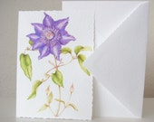 Hammered, deckle edged Note Cards, 5 Pack, Clematis 'Multi Blue'.