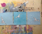 Seagulls Fly, Illustrations, Origanal Drawings