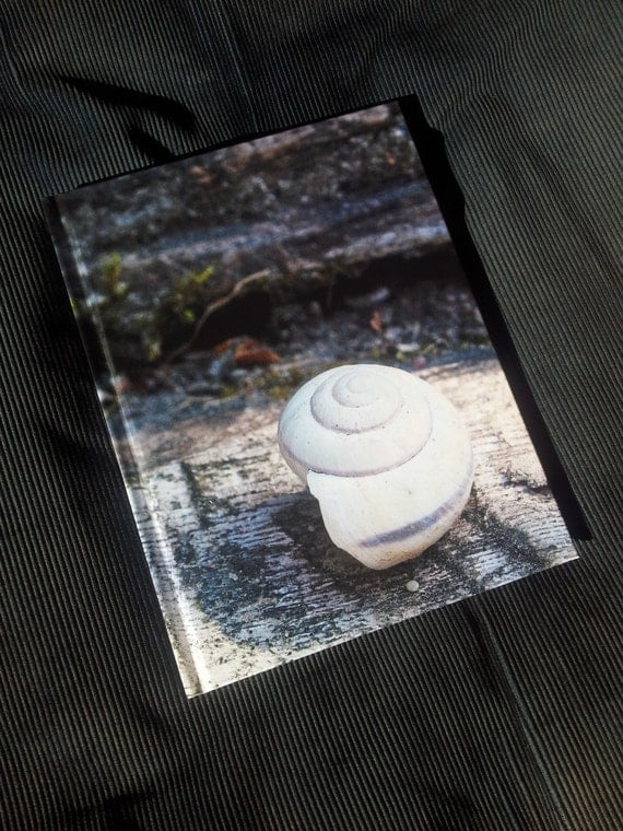 Front cover of notebook with snail shell
