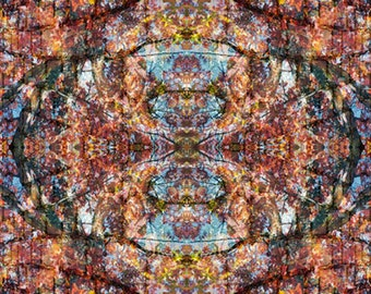 Thermocline - Psychedelic Kaleidoscopic Print