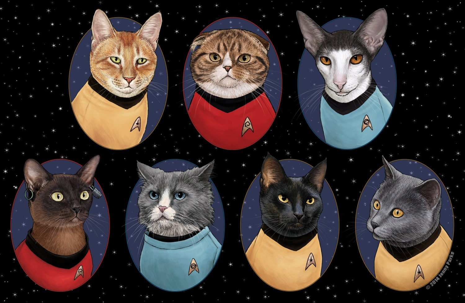 Out Of  Cats New Captains Reviews