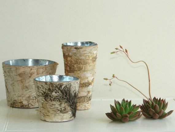 birch bark vases  wood boxes, square wedding flower pot, centerpieces, planter woodwork,rustic, chic wedding wood boxes