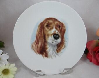 Vintage Royal Porzellan Bavaria K.P.M. Dog Plate