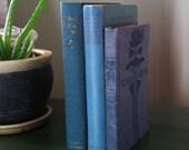 Vintage Blue Sea Book Lot: Rudyard Kipling, Peace, Ryecroft Collectors Set Design Decor SALE