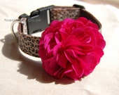 Modern Hot pink flower with  leopard print ribbon collar for lovely dog or cat .buautiful dog collar,Birthday gift,dog fashion,pet collar