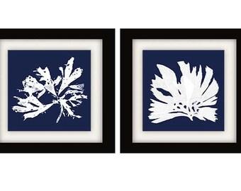 Navy Algae Prints, Navy Blue Coral Wall Art, Blue White Decor, Navy Blue Artwork, Navy Algae Prints, Set of 2 Prints, Square Prints