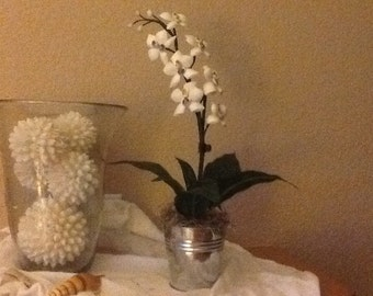 Orchids made with seashells
