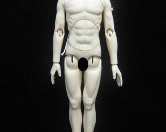 60cm Boy Body