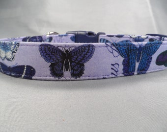 Indigo Butterflies Dog Collar