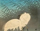 Japanese animals birds art prints, Two Herons FINE ART PRINT, japanese woodblock prints, animals paintings, japan vintage art, home decor