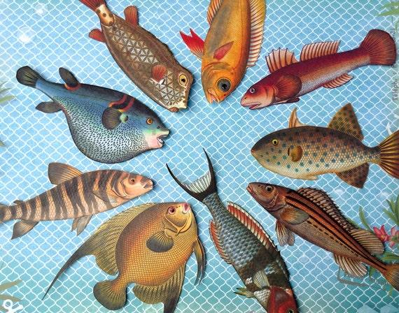 diy aquarium bastelbogen mit bunten fischen zum ausdrucken und. Black Bedroom Furniture Sets. Home Design Ideas