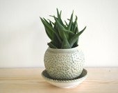 Green planter with drainage. textured porcelain. Flower Pot. Handmade. Ceramic. Porcelain. Pottery, Mother's day gift. Housewares. Planter