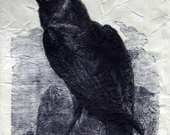 Scarf - Vintage Raven