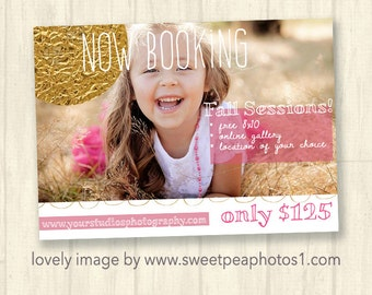 Fall Marketing Board, Autumn Fall Marketing, Fall Mini Session Template for Photographers, Photoshop template, Layered PSD, Fall Ad, m144