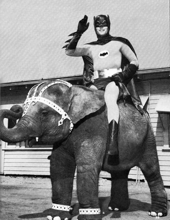 c.1960's Batman riding an Elephant   :Old Antique Vintage Photograph Photo Art Print -Reproduction
