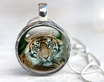 Tiger Necklace-  Tiger Jewellery, Tiger pendant, animal jewellery, Zoo animals. gift for animal lover, Tiger photo pendant