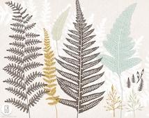 Fern, wild plants, woodland flora, wildflowers, ferns vector clip art, herbs, greens, grasses