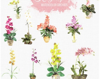 Watercolor Orchids collection - Commercial and Personal Use